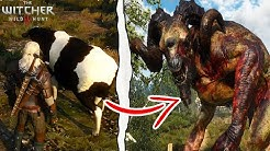The Witcher 3 | What Happens if You Kill 6 Cows at White Orchard? (The Witcher 3 Secrets)