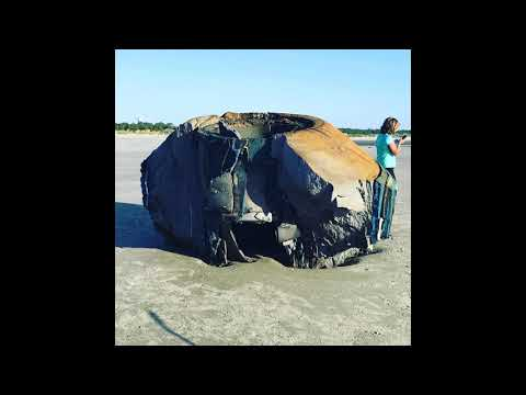 Big Rig - UFO Washes Up On South Carolina Beach?!