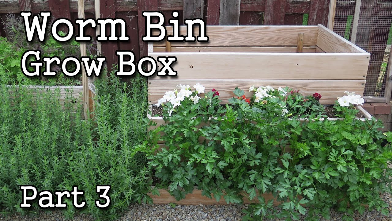 Compost Worm Bin / Grow Box Planter part 3 -Free Range Worms!