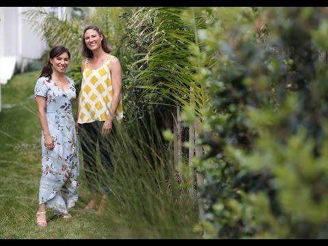 Ideas for creating a beautiful subtropical garden