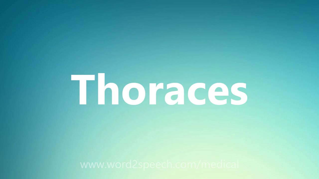 Download Thoraces - Medical Meaning and Pronunciation