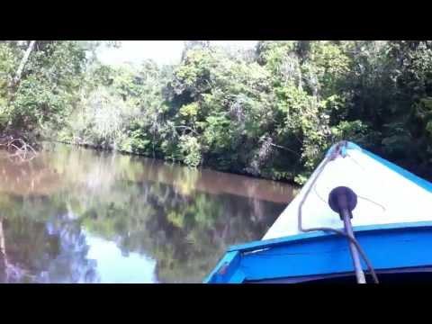 04-10-2013 Trip to Groete Creek, a gold mining area 65km from Georgetown, Guyana 1