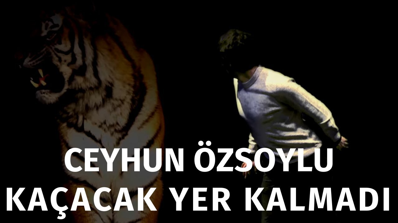 Ceyhun Özsoylu - Kaçacak Yer Kalmadı