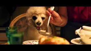 Pongo il cane milionario - Official Movie Trailer in Italiano - FULL HD