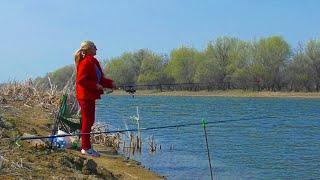 Разведчица на воблу Рыбалка в Астрахани 2021 Ловля Астраханской воблы