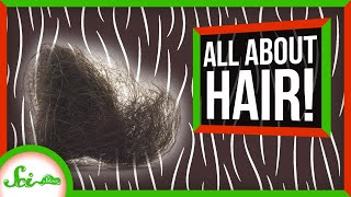 From Your Head to Your… Anus: The Truth About Hair | Compilation