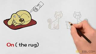 Learn Prepositions of Place with Cats and Dogs   Prepositions of Location for Kids