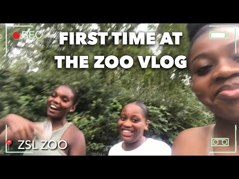 MY FIRST TIME AT THE ZOO + EATING OUT AFTER LOCKDOWN VLOG | CANDLE M