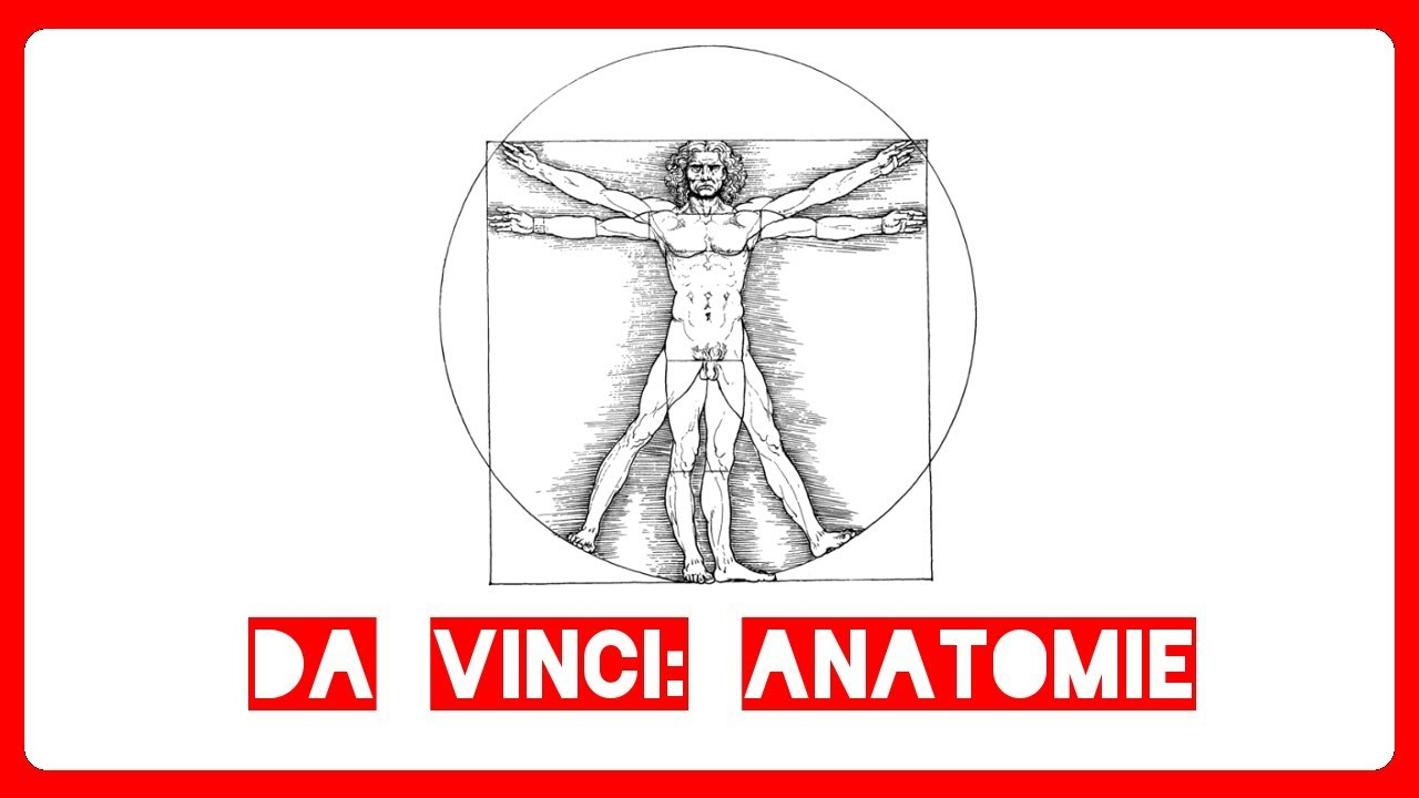 alte Meister & große Geister: Leonardo da Vinci: Anatomie - Mfiles ...