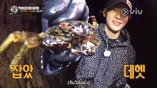 รายการ The Law of Jungle [2017] Ep 285 [แจฮยอน NCT นักล่าปู] ซับไทย