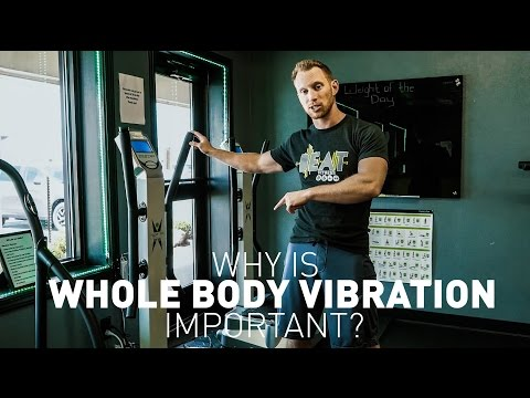 Whole Body Vibration | Beat Fitness - Wexford, Pa BEAT Fitness