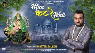 Maa Katre Wali || Master Saleem || Devotional Song 2020 || Master Music