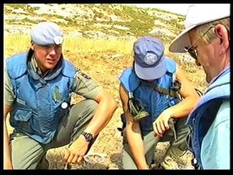 UNIFIL Swe Log Bat L112, Lebanon 1992 March-September