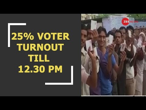 Chhattisgarh Election 2018: 25% voter turnout till 12.30 pm