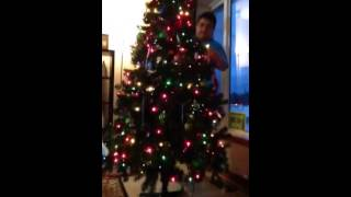 Decorating the Christmas Tree- PART 1 Thumbnail