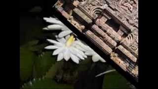 ODIA CHHANDA BIBHUSANA PUSPE JAA KANTI JANA BY GHANASHYAM PANDA, EDITED BY SUJIT MADHUAL (JITU)