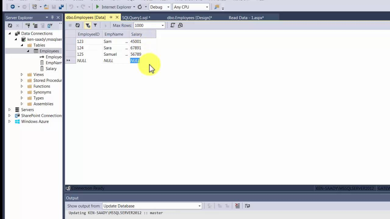 ASP net Database - DataSource and DataList Controls