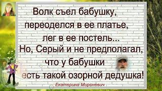 Самые смешные Анекдоты Выпуск 24 Волк съел бабушку Юмор Шутки Позитив Екатерина Мироневич