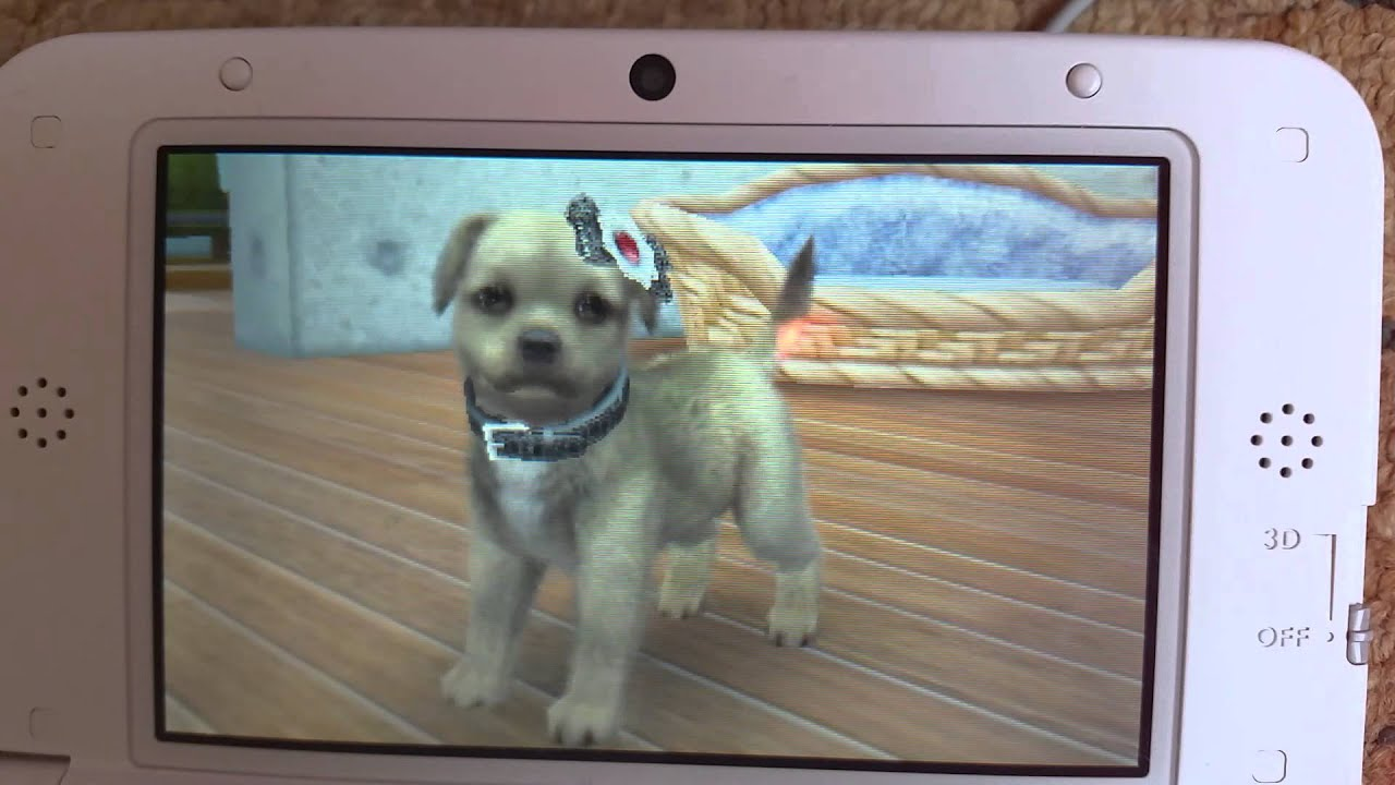 How To Breed Your Dogs On Nintendogs And Cats