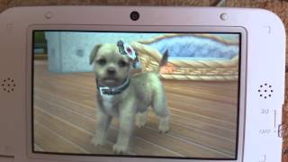 How to breed in nintendogs + cats