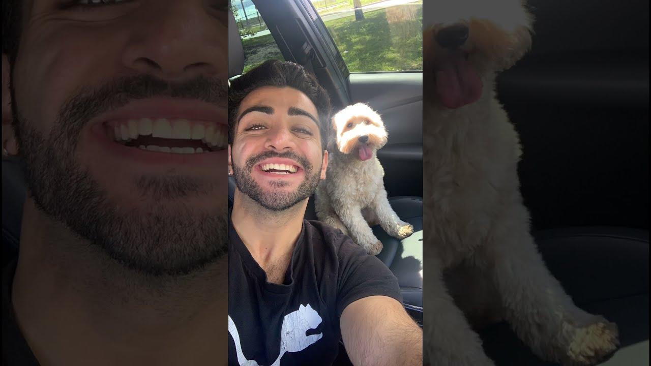 Kobe loves car rides!! | Shawn Medi