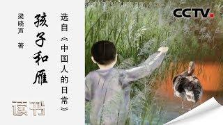 《读书》 20191102 梁晓声 《中国人的日常》 孩子和雁| CCTV科教