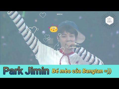 [#BTS FUNNY MOMENTS] Park Jimin, Bé mèo của Bangtan =))