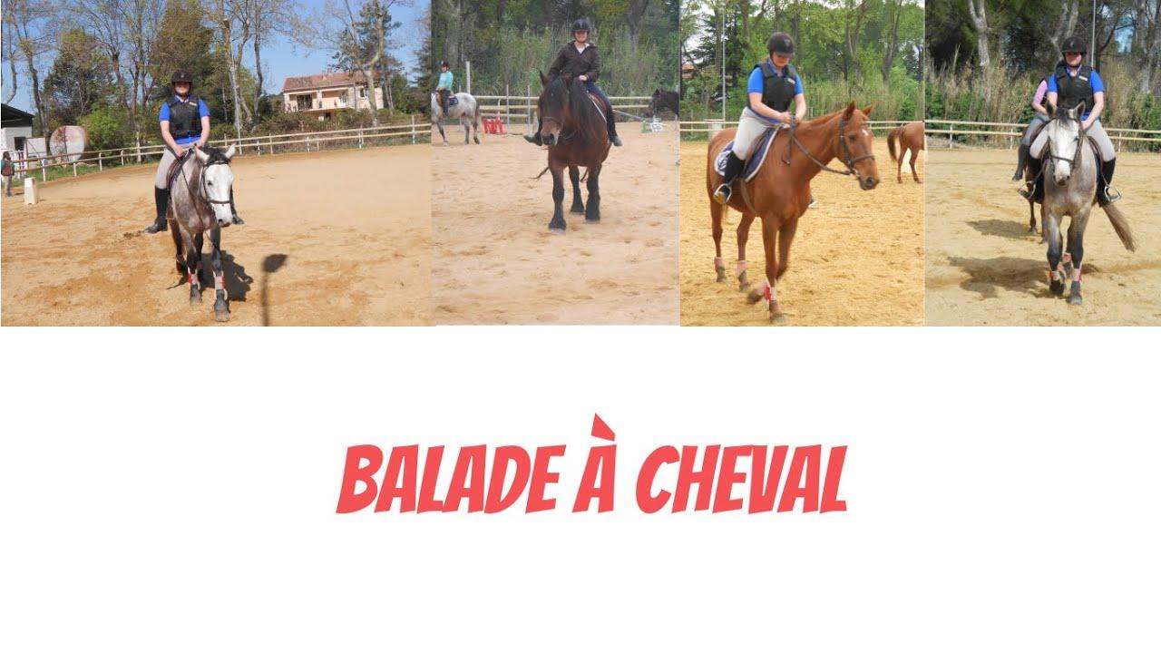 6b7feeb6bb5 Balade à cheval  Grau du Roi      Partie 1  - YouTube