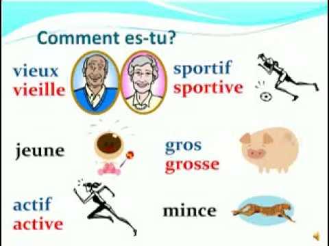 Comment dcrire une personne en franais FLE Description