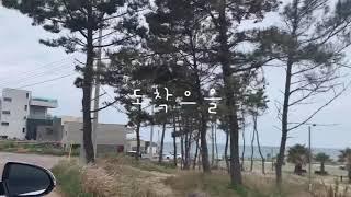 | 드리투어 | 주말여행 in Jeju 곽지 신창 제원