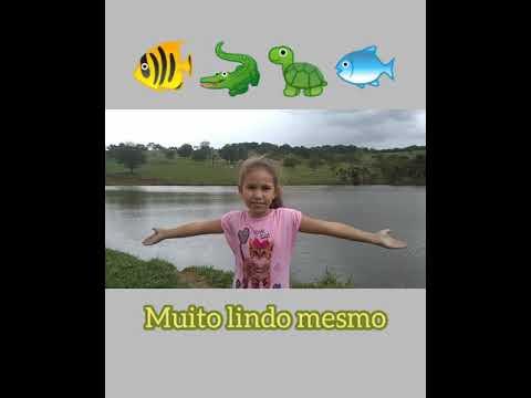 Aragoiânia- GO (19) #Um dia na Roça