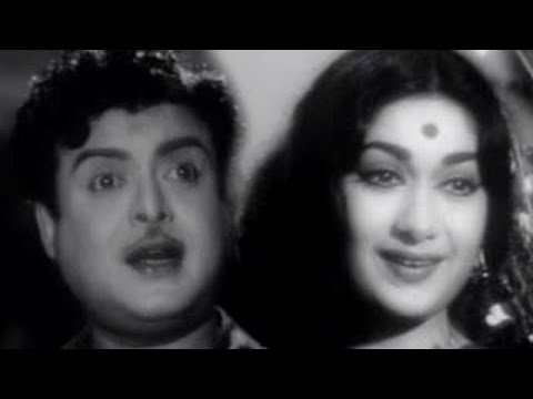 Hello Mister Zamindar (1965) blockbuster Tamil Movie Starrin