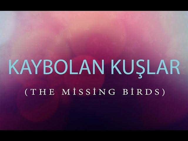 Kaybolan Kuşlar Kısa Film (Çocuk İstismarına Sessiz Kalma!)