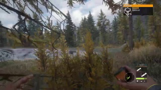 Zyroi's The Hunter: Call of The Wild Gameplay (Come chat)