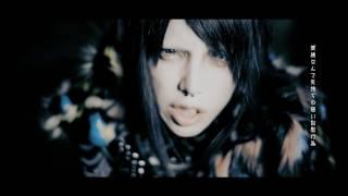 ラッコ 『色眼鏡 色彩皆無』MV FULL