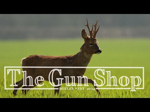 Identifying Deer: The Roe - The Gun Shop