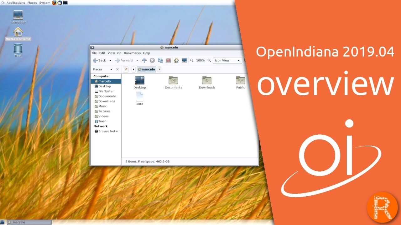 free os that runs windows programs