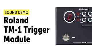 Roland TM-1 Trigger Module Sound Demo (no talking)