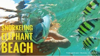 Things to do in Andaman   Snorkeling at Elephant Beach (With Price)   Havelock   Amazing Andaman  