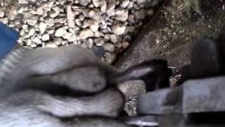 Замена тормозных колодок Лада Калина 2