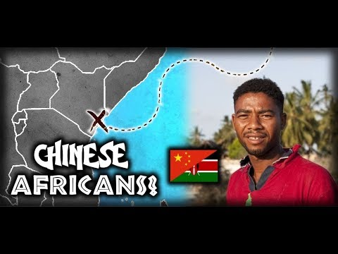 What Happened to the Chinese Explorers that Landed in East Africa? History of Chinese in Africa