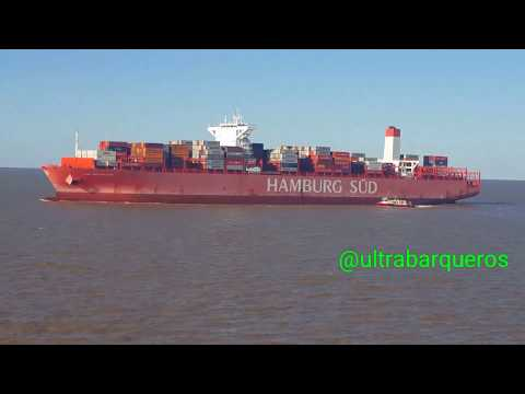 """Container Ship """"MSC LILY"""" /Container Ship """"CAP SAN MALEAS"""" /On board Bulk Carrier Ship """"COURAGEOUS"""""""