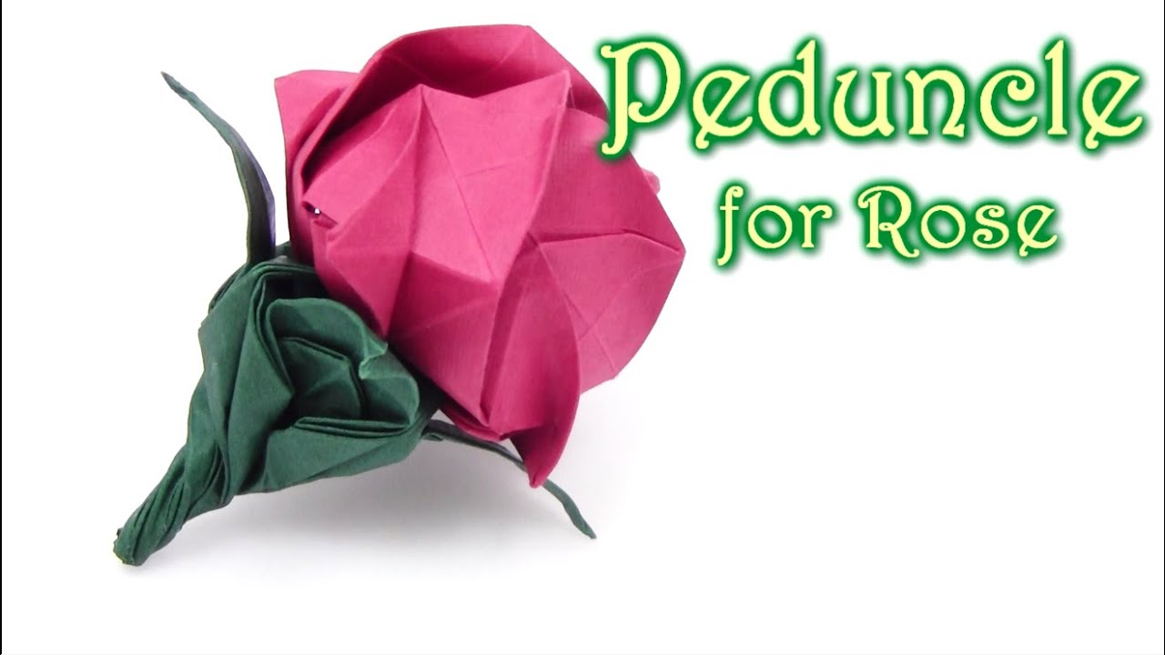 Origami Peduncle for Kawasaki Rose - Yakomoga Origami tutorial - YouTube