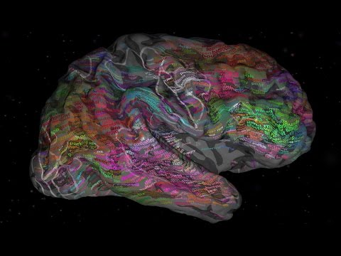 The brain and how we process language