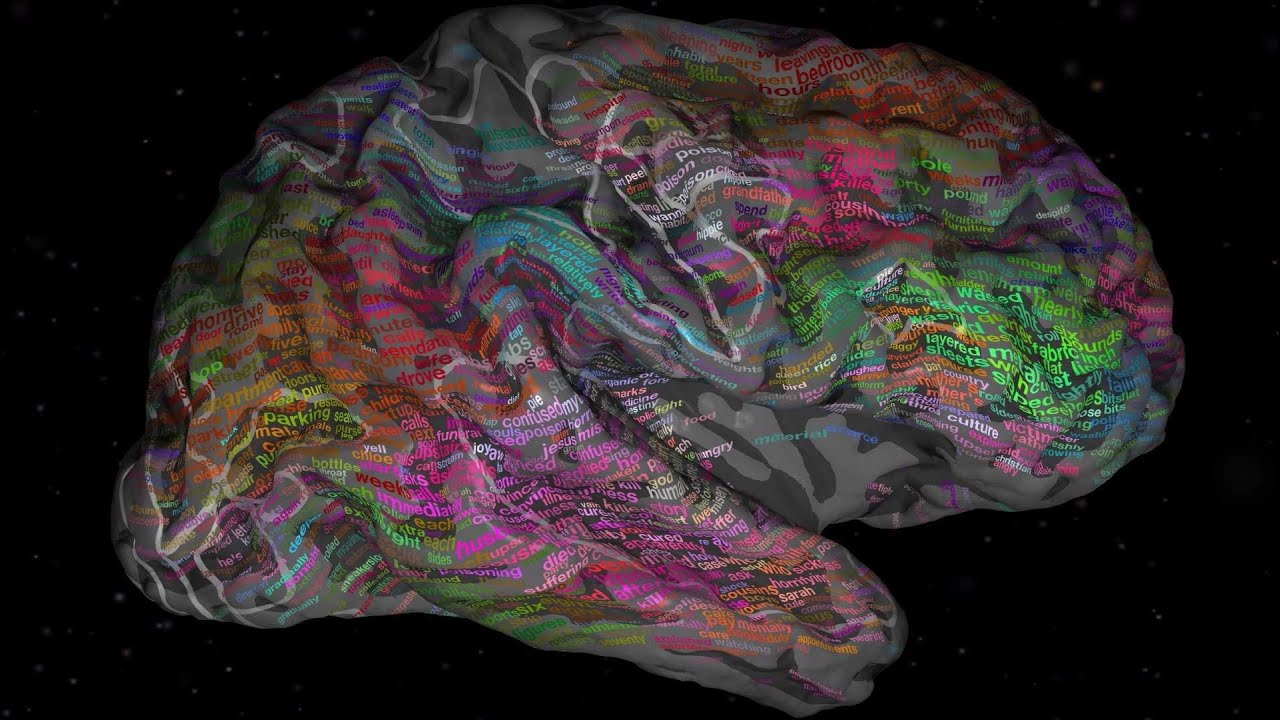 Download The brain and how we process language