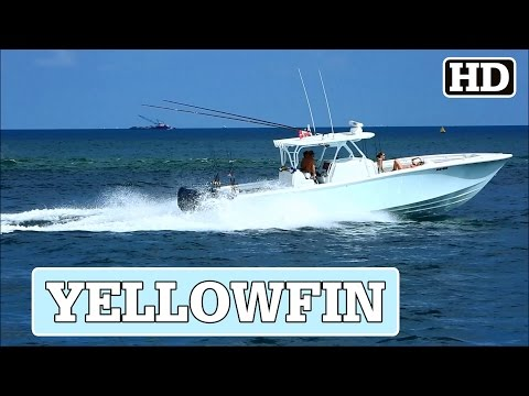 Yellowfin Open Running out Fort Lauderdale   AD/HD