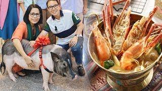 Choa'ng Với Chú Lợn 60Kg Sống Sang Chảnh Ngày Ăn Tổ Yến, Đêm Có Thực Đơn Riêng Ở Sài Gòn