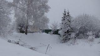 Дачный влог.Снегопад  Ставит рекорды! Птицы Зеленушки )))