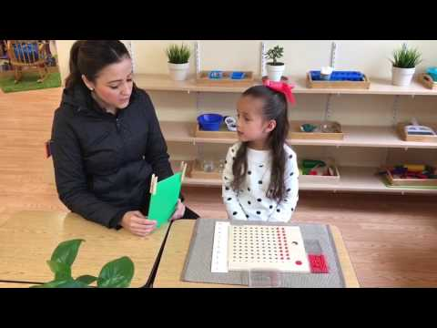 Multiplication Board - An essential Montessori Material