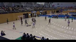 20180730 男子ハンドボール 準々決勝 氷見富山県対 香川中央香川県